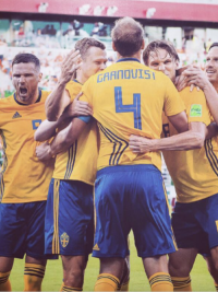 Our Favorite Reaction Tweets to Sweden's World Cup Victory Against Mexico