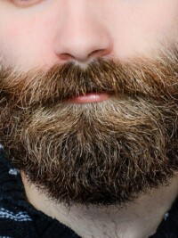 Break Out The Plaids, Boys… It's Beard Season