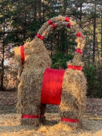 Meet The Americans Who Celebrate Their Own 'Gävle Goat'