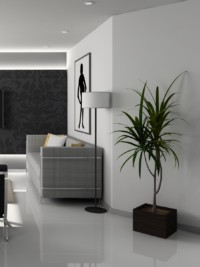 Get the minimalist look in your home