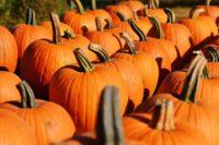 DIY Swedish-Inspired Halloween Costumes