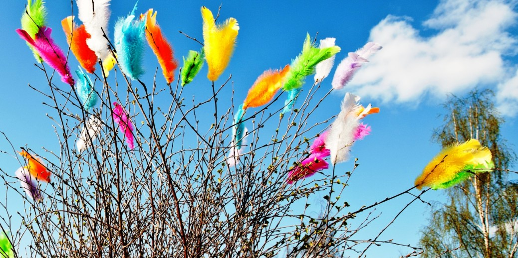Swedish Easter traditions - feather on birch branches
